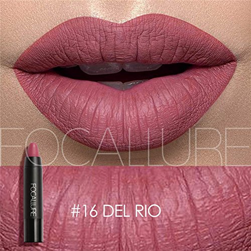 (Focallure Matte Lipstick Metallic Sparkly Lipgloss Womens Makeup Stay On Glossier Lip Gloss Long Lasting Colorstay Solid Waterproof Lip Stick)