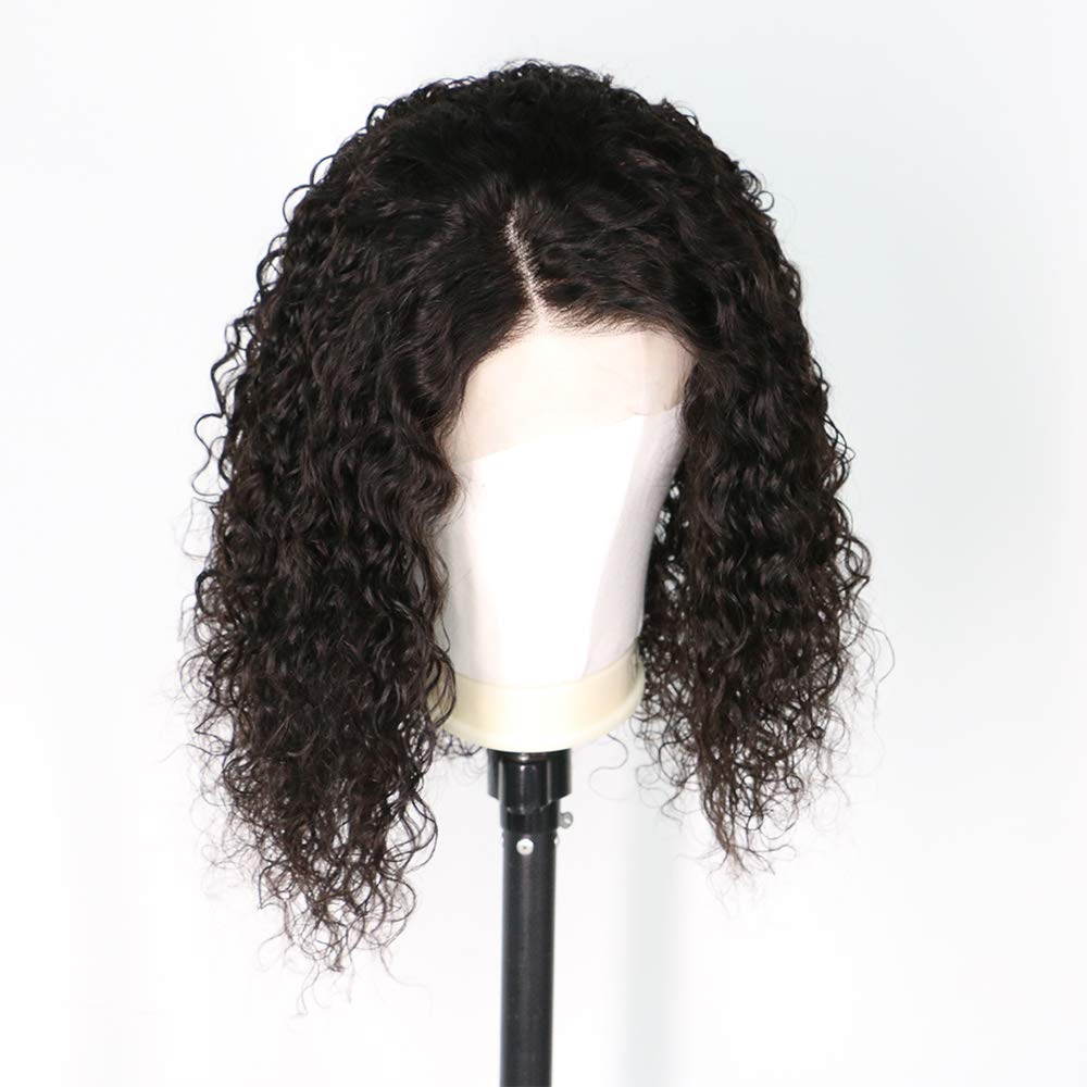 Short Curly Wig Human Hair Brazilian Lace Front Human Hair Wigs With Baby Hair Pre Plucked Bleached Knots (10inch) by RULINDA