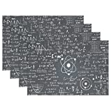 Education Back To School Science Homecoming Place Mat Table Mat for Kitchen Dining Room Heat Insulation anti-skid Home Decor by MOCK ST Place Mat 12 x 18 inches Set of 6