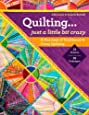 Quilting _ Just a Little Bit Crazy: A Marriage of Traditional & Crazy Quilting