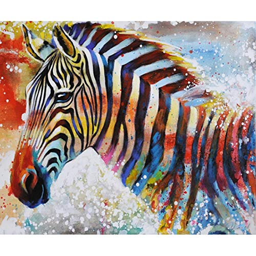 TianMaiGeLun Full Drill 5d Diamond Painting Kits Cross Stitch Craft Kit New DIY Kits for Kids Adults Paint by Number Kits (Zebra, 25x30cm, Square Drill) (Zebra Full Diamond)