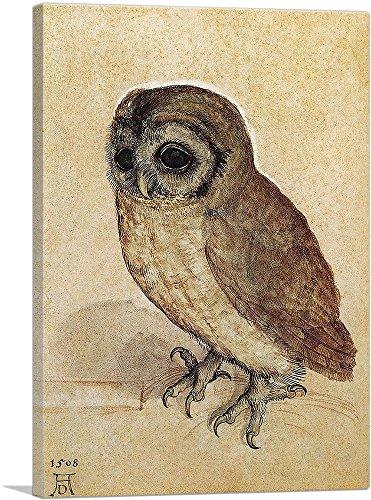 ARTCANVAS Little Owl 1506 Canvas Albrecht product image