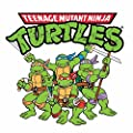 Teenage Mutant Ninja Turtles Cartoon Opening Theme (1987)