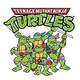 Teenage Mutant Ninja Turtles Cartoon Opening Theme (1987)