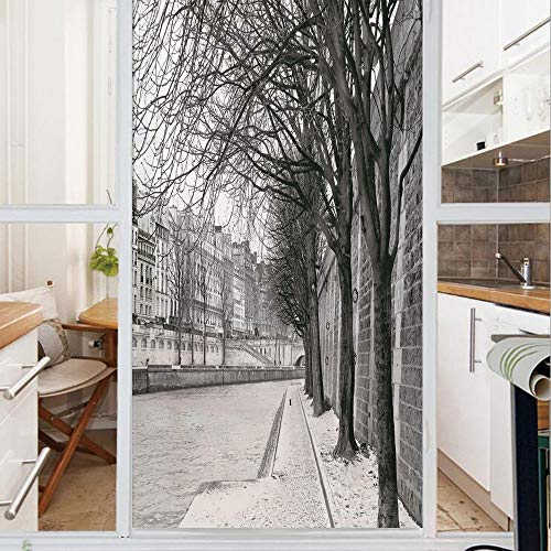 Decorative Window Film,No Glue Frosted Privacy Film,Stained Glass Door Film,Seine River Paris France Snowy Winter in Urban City Trees,for Home & Office,23.6In. by 59In Black White Grey