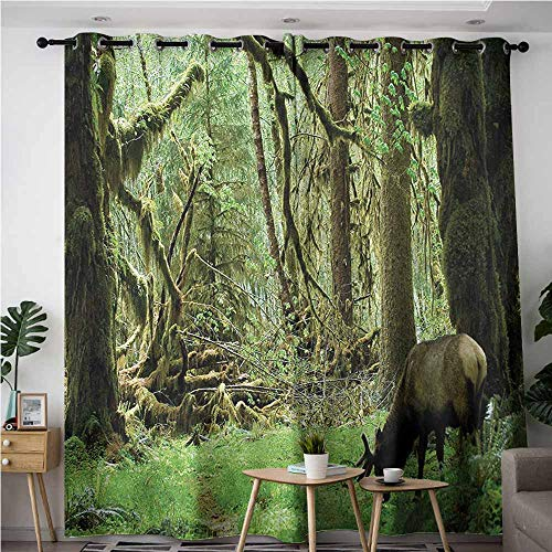 AndyTours Thermal Insulating Blackout Curtains,Rainforest,Roosevelt Elk in Rainforest Wildlife National Park Washington Antlers Theme,Curtains for Living Room,W72x96L,Green Brown