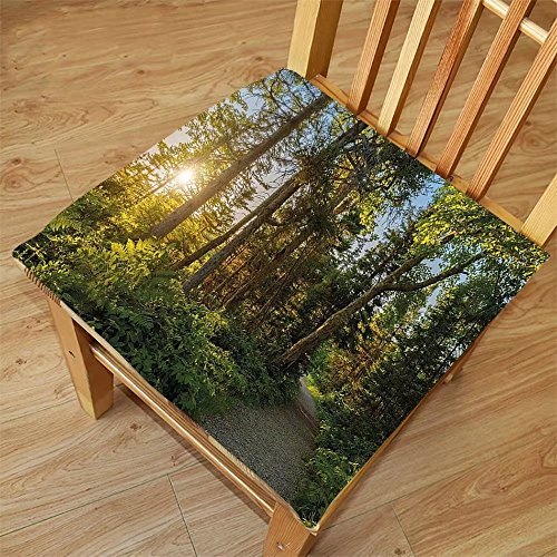 Nalahome Set of 2 Waterproof Cozy Seat Protector Cushion Landscape National Park in Cape Breton Highlands Canada Forest Path Trees Tranquility Photo Blue Green Printing Size 20x20inch