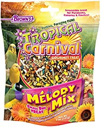 F.M.Brown\'s Tropical Carnival Melody Mix Small Bird Treat, 5 oz