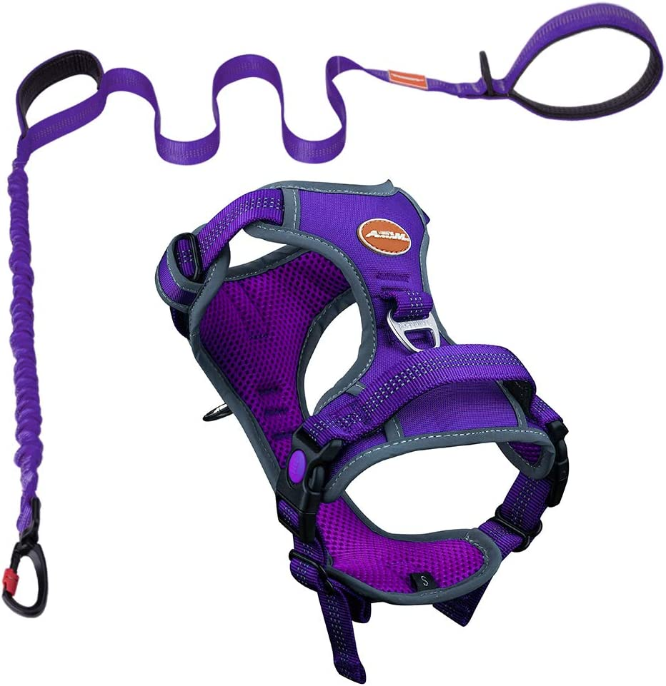 AdventureMore Dog Harness Leash Set, No-Pull Dog Harness, Front Clip Dog Harness, Reflective Dog Vest, with 5 ft Dual Handle Dog Leash, Padded Handles Bungee Training Dog Leash