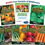 Container Heirloom Vegetable Garden Seeds - 7 Seed Packets + 8 Gardening Guide eBooks, Non-GMO, No Fillers - Bulk Variety Pack of Tomato, Carrot, Lettuce, Radish, Cucumber, Basil, Onion, Squash