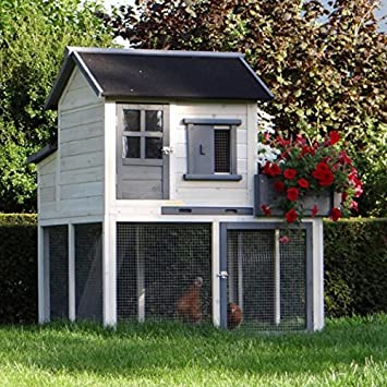 Designer Hühnerstall animalhouseshop de hühnerstall 116x112x134cm amazon de