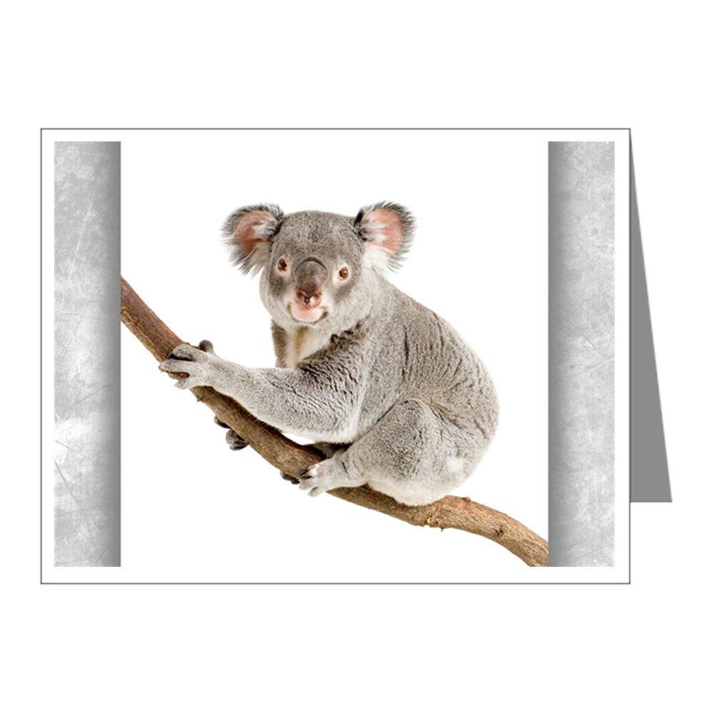 Note Card Koala Bear on Branch