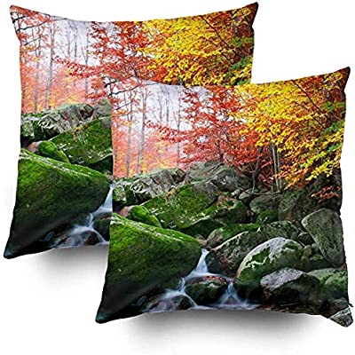 Bue Time Throw Square Pillow Cover, Fundas de Cojines Autumn