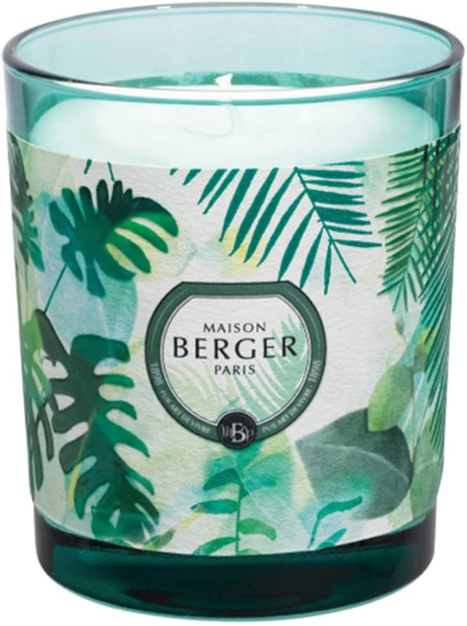 Lampe Berger Immersion-Fresh Eucalyptus Bougie 240 g