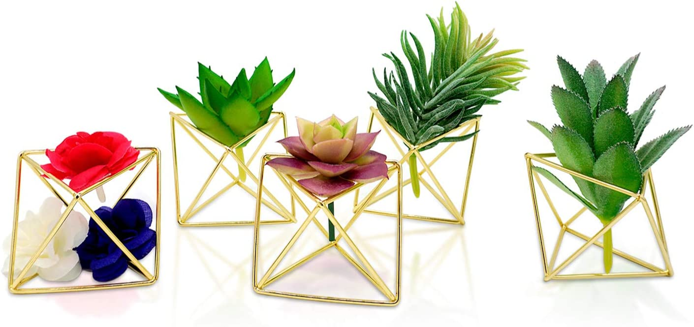 Molten. Geometric Air PlantHolder Modern Decor Gold Terrarium, Tabletop Home Wedding Gifts, 2.6'' Long, 5 Pack
