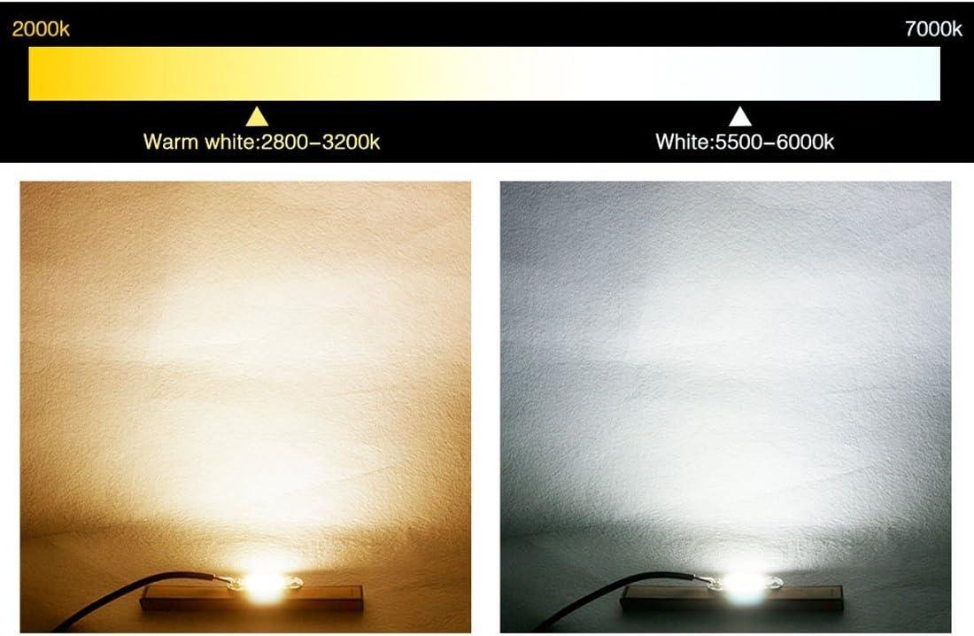 Accesorios de LED Color : Blanco claro AC 220V 2 PCS 100W 2800-6000K Brillo de alta potencia COB Chips LED Light Beads