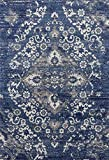 4620 Area Rug Modern Carpet Large New (5' x 7', Denim)