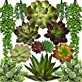 SEEKO Artificial Succulents - 14 Pack - Create Realistic Succulent Arrangements, Faux Potted Succulent Decor, and Fake Succulent Planters for Your House or Apartment
