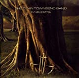 Synchestra by Devin Townsend