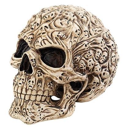 Alma Espíritu escultural Caja de cráneo en el hueso envejecido