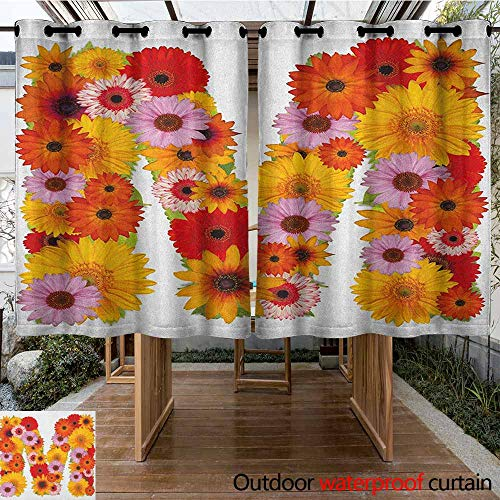 Balloons Daisy Gerbera (AndyTours Outdoor Grommet Window Curtain,Letter M,Flower Alphabet with Gerbera Daisies Natural World Written Language Summer Foliage,for Patio/Front Porch,K183C160 Multicolor)