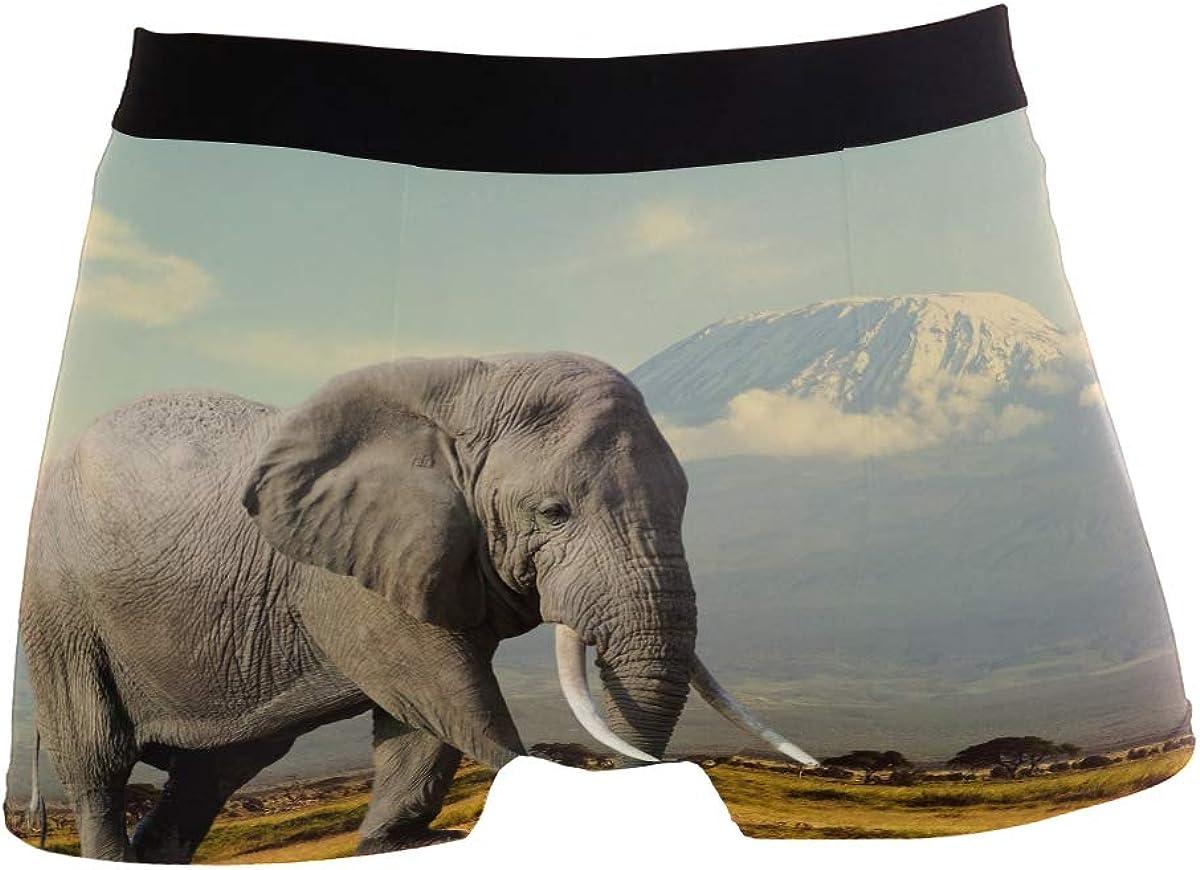 Multi ZZKKO Mens Fashion Black Horse Mens Underwear Boxer Briefs Breathable