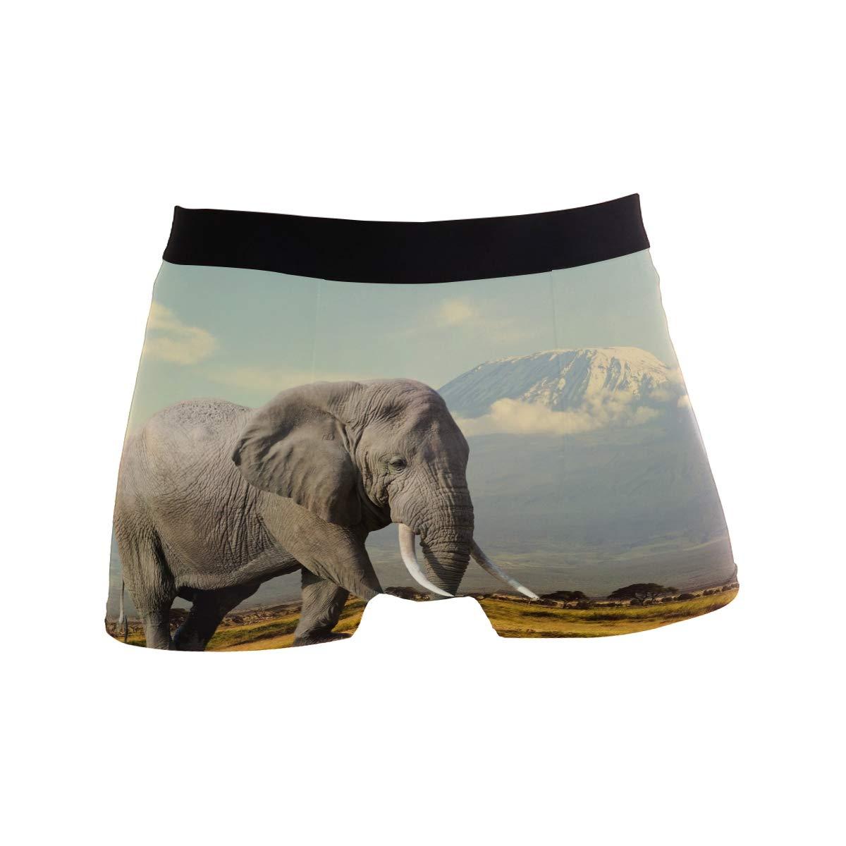 ZZKKO Walking Elephant Mens Boxer Briefs Underwear Breathable Stretch Boxer Trunk with Pouch S-XL