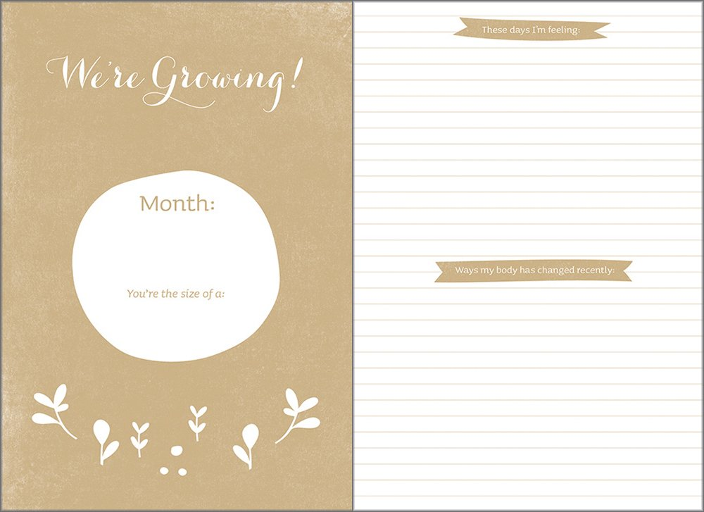 Expecting you a keepsake pregnancy journal amelia riedler expecting you a keepsake pregnancy journal amelia riedler 9781938298349 amazon books fandeluxe Choice Image