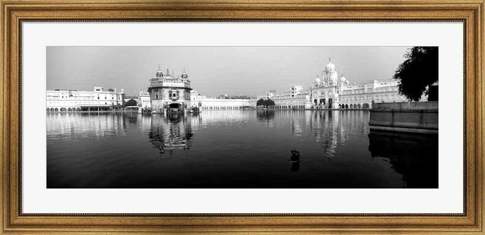 Temple at the waterfront, Golden Temple, Amritsar, Punjab, India by Panoramic Images Framed Art Print Wall Picture, Wide Gold Frame, 44 x 21 inches