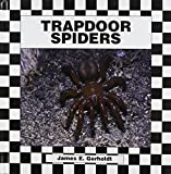 img - for Trapdoor Spiders book / textbook / text book