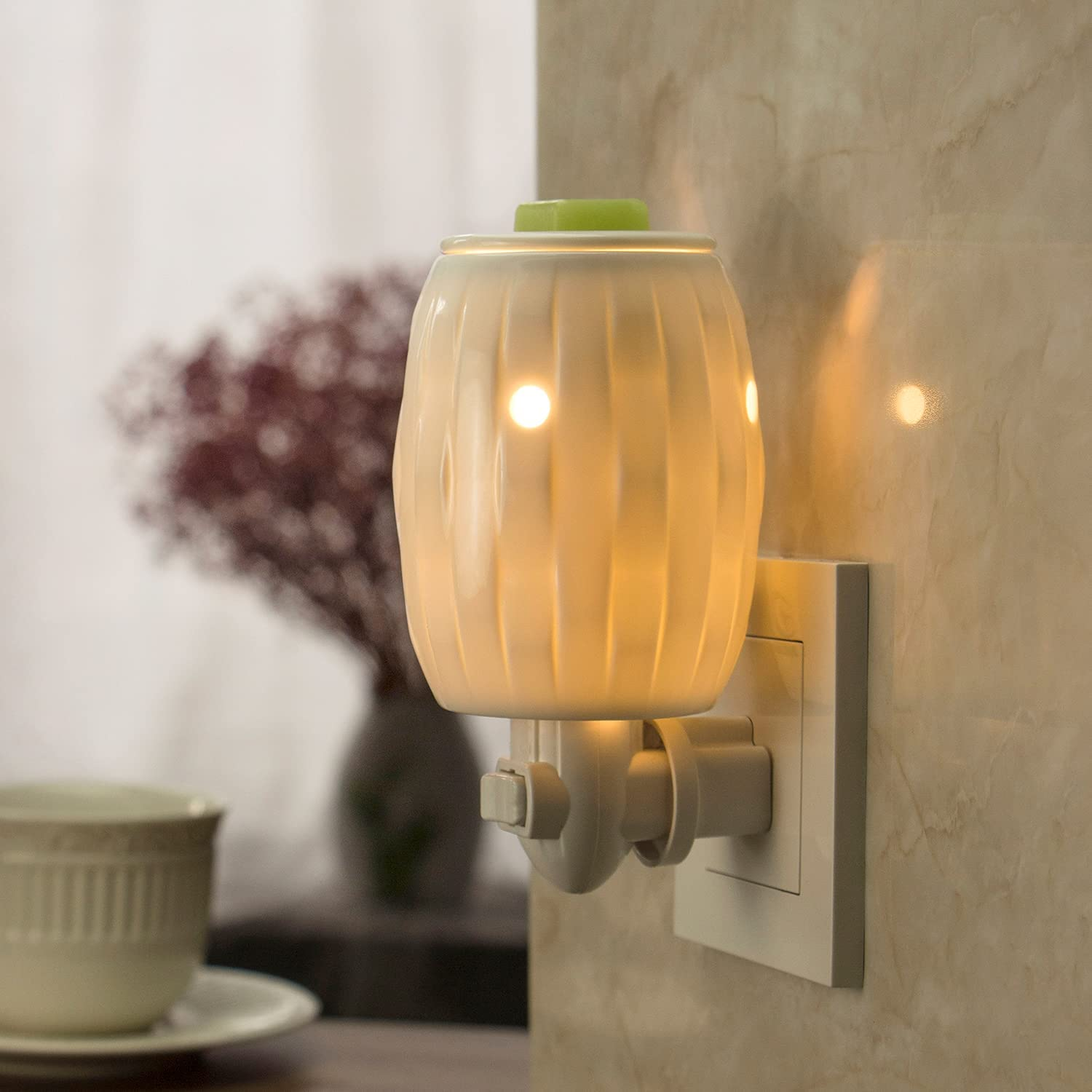 Wax Warmers Plug In Melt Heater Home Decor with Light 17 Fragrance Scented Oil
