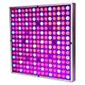 MAIICY LED Grow Light, 45w LED Plant Lights Full Spectrum for Indoor Greenhouse Hydroponic Plants Growing and Flowering