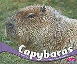 Capybaras, Mary R. Dunn, 1429686812