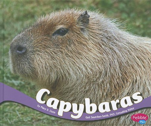 Capybaras (South American Animals)