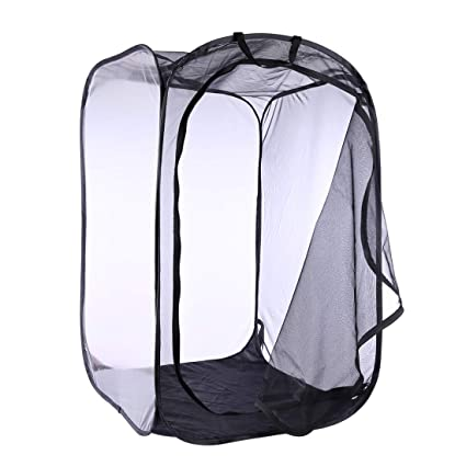 Leoie Mini House Garden Growing Tents Insect Flower Plant Translucent Greenhouse 60*60*90