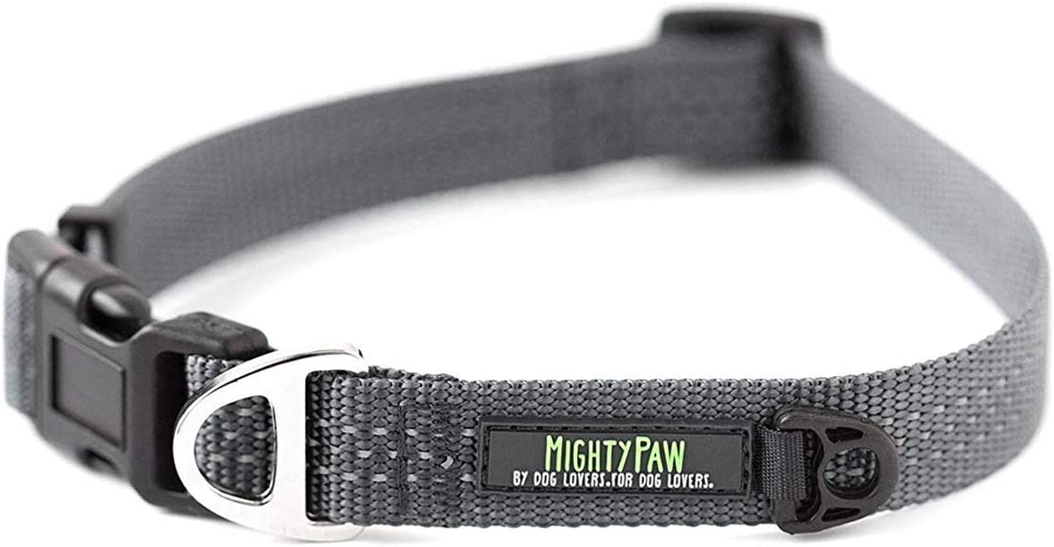 Mighty Paw Reflective Dog Collar | Premium Nylon, High Visibility Pet Collar with Buckle and Reflective Stitching, Light Weight and Adjustable, Perfect for Small and Large Dogs