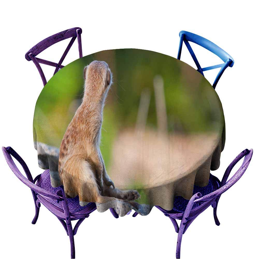 color05 60  Round(150CM) AndyTours Fashions Table Cloth,Meerkat or Suricate1,High-end Durable Creative Home,70 INCH