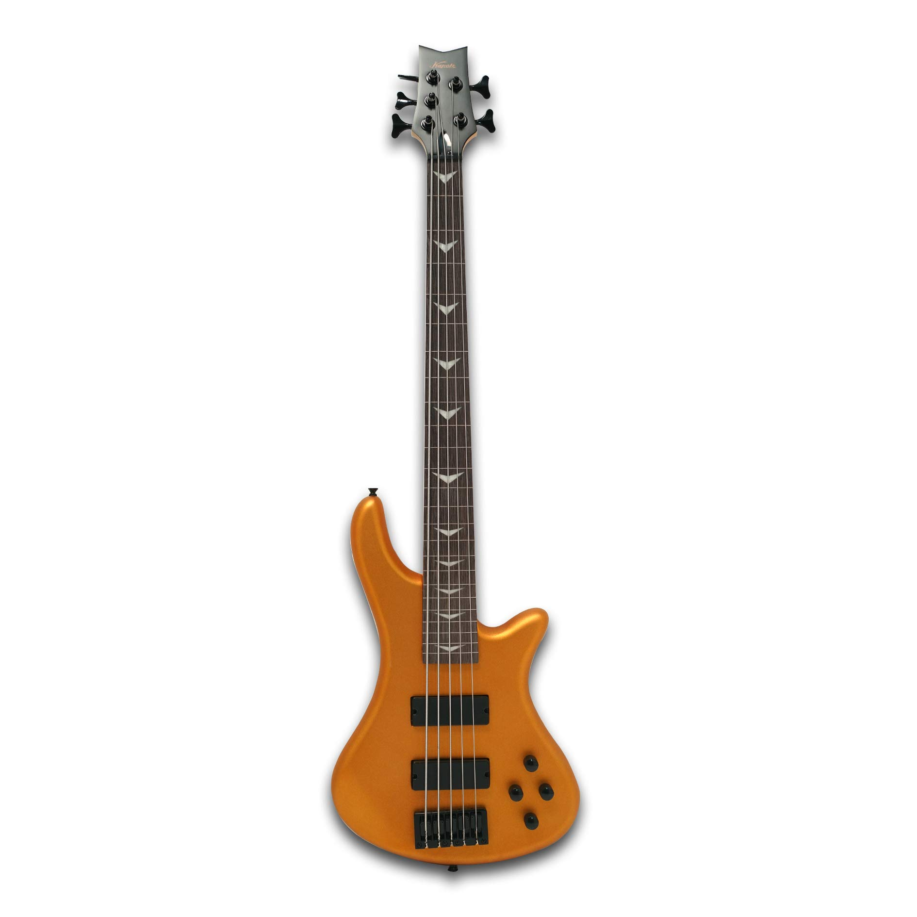 Fretless 5 String Electric Bass