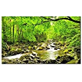 "Sea Charm - Green Morning Sun Forest Picture Print on Canvas - Forest Stream Lake Wall Art - Framed and Ready to Hang - Modern Home Decor- 24""x40"""