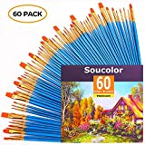 Acrylic Paint Brush Set, 6 packs/60pcs Nylon Hair Brushes for All Purpose Oil Watercolor Painting Artist Professional Kits