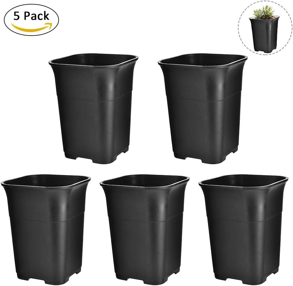 5 Pcs Macetas Plástico Cuadradas Floreros Pequeños Negros para Suculentas Plantas Maceteros de Flores Decorativos Interior Decoración a Hogar, Oficina