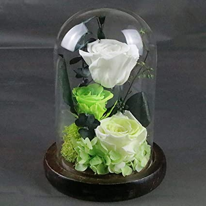 Amazon DuDuDu Eternal Flower Glass Box Rose Valentines Day