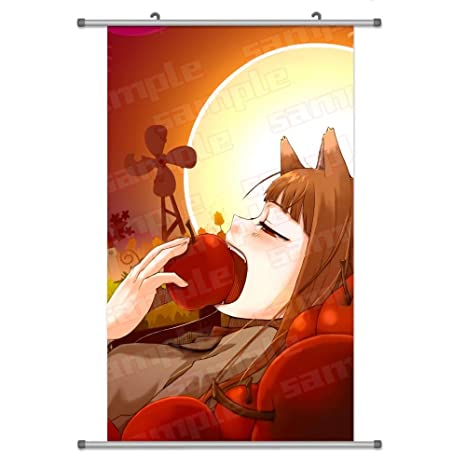 Amazoncom A Wide Variety Of Spice Wolf Anime Characters Wall