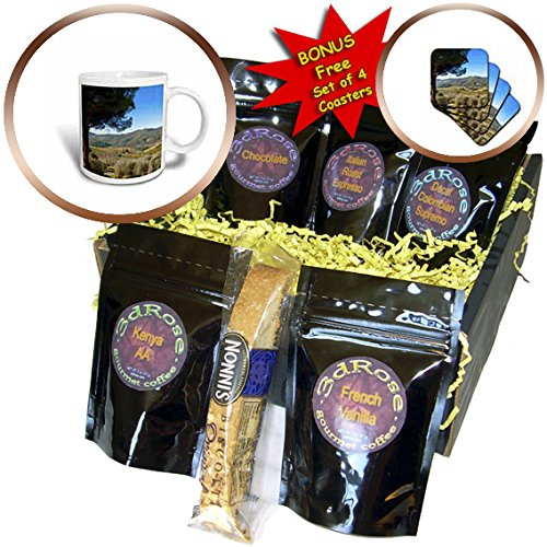 3dRose Danita Delimont - Tuscany - Vineyards and olive groves, Greve in Chianti, Tuscany, Italy - Coffee Gift Baskets - Coffee Gift Basket (cgb_249328_1)