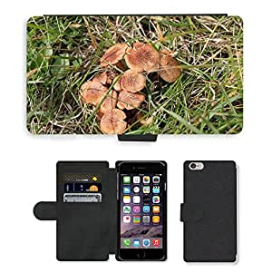 Hot Style Cell Phone Card Slot PU Leather Wallet Case // M00152873 Mushrooms Brown Fungi Fungus Wild // Apple iPhone 6 PLUS 5.5""