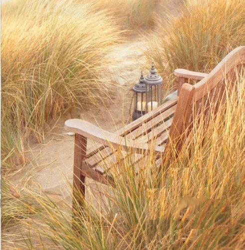 TeakStation Grade-A Teak Wood Luxurious 5 Feet Bench Model TR1 Bench Cushions Sold Separately – Choose Below TSBHTR5