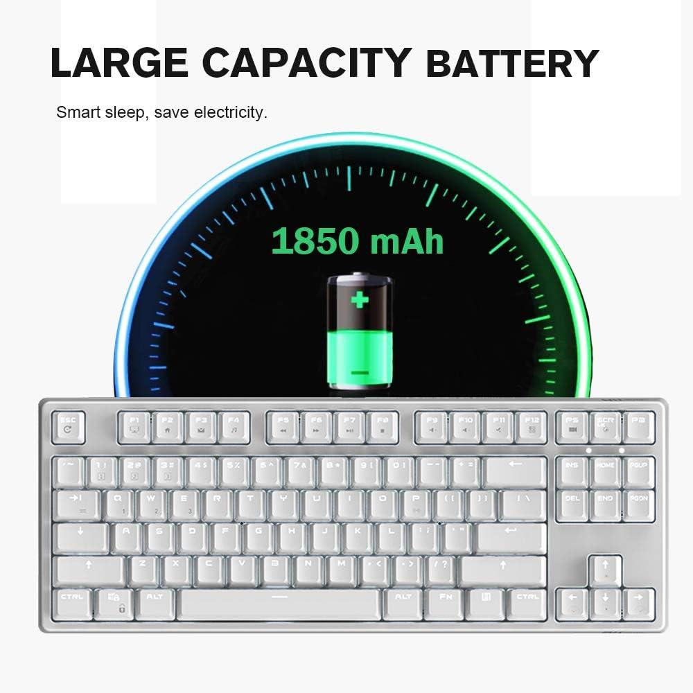 Hoopond Tastiera Meccanica Ricaricabile 87 Tasti RK987 modalit/à Dual Bluetooth cablata//Wireless 17 modalit/à di retroilluminazione Tastiera da Gioco con Effetto retroilluminazione a LED Bianco