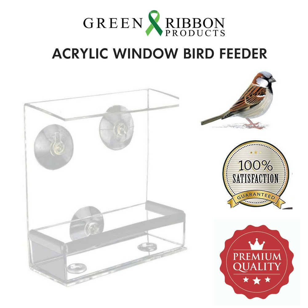 """Green Ribbon Acrylic Window Bird Feeder, Easy to Fill, Lightweight, Super Strong Suction Cups, 6.5"""" x 6"""" x 2.75"""", FREE NATURE AT YOUR WINDOW E-BOOK Included."""
