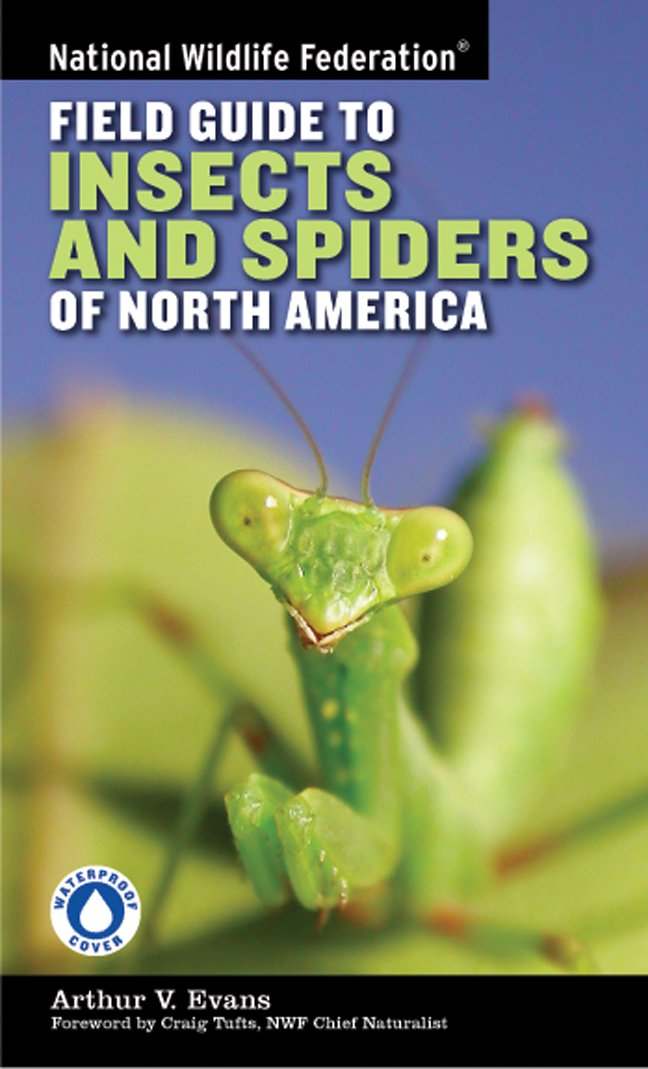 National Wildlife Federation Field Guide To Insects And