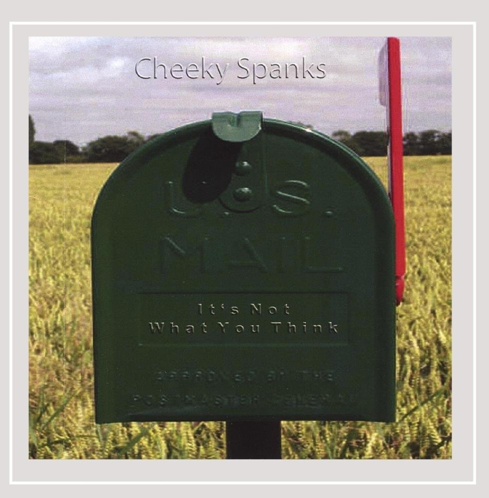 CD : Cheeky Spanks - It's Not What You Think (CD)